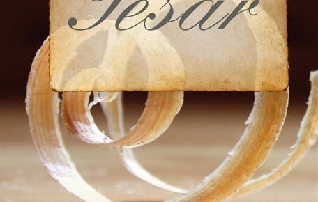 Tesař, příběh pro úspěch(ané)